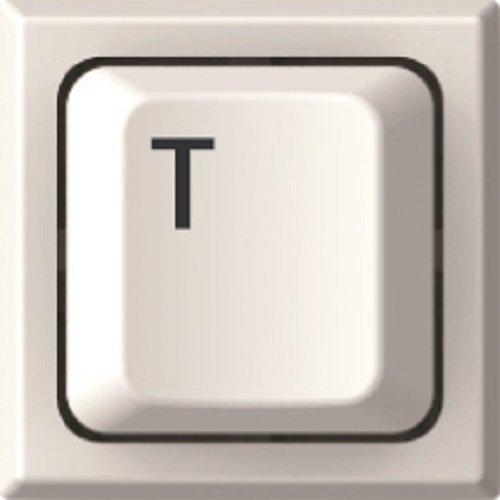 サンビー 印鑑 ハンコ キー印 デザインルーム メールオーダー T key01-T