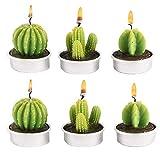 CHSG 6 Piezas Velas De Candelita De Cactus, Lindas Mini, Creativa De Plantas Suculentas, Hechas A Mano Delicadas Sin Llama Luz De Té, para Fiestas, Bodas, SPA, Decoración del Hogar, Regalos