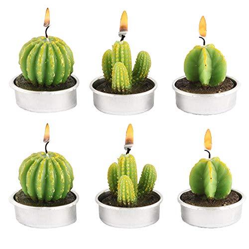CHSG 6 Pezzi Candele di Cactus Tea Light Fatto a Mano Delicato Succulento, Verde Carino Mini Piante Grasse Profumate per Festa di Compleanno, Matrimonio, Spa, Decorazione Casa Regalo