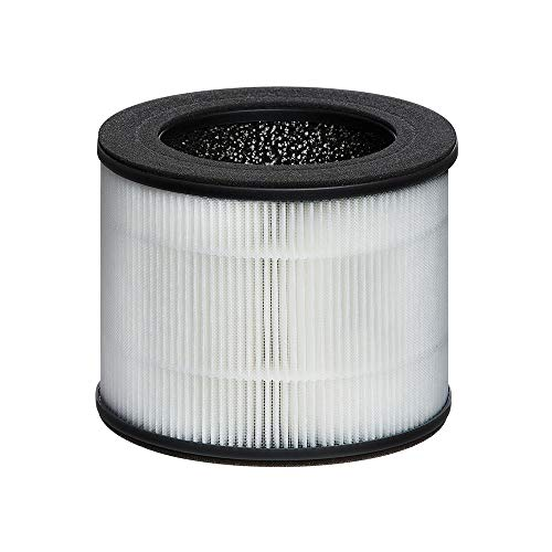 HoMedics TotalClean Replacement 360° HEPA-Type Filter with Activated Carbon, Air Cleaner for Home, Office, Allergens, AP-T10-BK and AP-T10-WT Air Purifier
