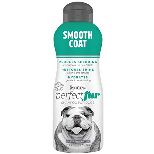 TropiClean PerfectFur Smooth Coat Shampoo for Dogs, 16oz - Made in USA - Unique Breed Specific Moisturizing & Shed Control Formula for Skin-Hugging Coat Breeds Like Bulldogs - Naturally Derived