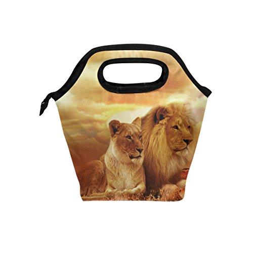 Animal Lions Orange repas isotherme Sac fourre-tout pour femme Lunch Box Cooler avec fermeture à glissière pour adultes/enfants filles, garçons, hommes