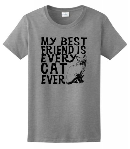 My Best Friend is Every Cat Ever Ladies T-Shirt Large Sport Grey
