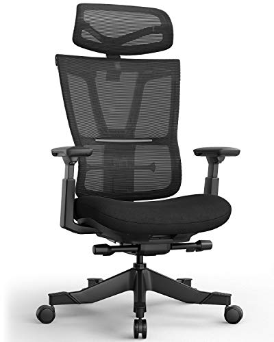 Ergonomic Chair, Snoviay Seat Depth Adjustable Task Chair Executive High Back Chair for Home Office Tilt Mesh Back with Waist Support Neck Head Rest (Black)