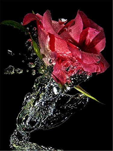 DIY 5D Diamante Pintura Taladro Completo Kit De Pintura De Diamante Para Adultos Arte Diamond Painting Rosas Para Decoración De Pared Hogar Regalo AD20779 Taladro Cuadrado 30x40cm