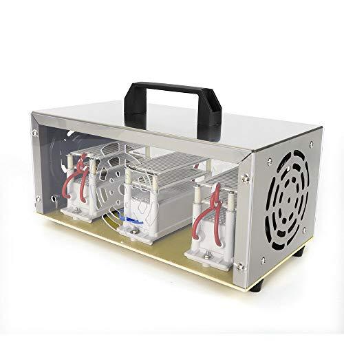 Generatore di ozono professionale 30000 mg/h purificatore d'aria dispositivo ozono sterilizzazione