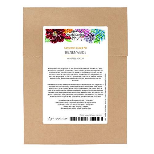 Piante mellifere - set di semi con 5 piante da fiore che attirano insetti utili