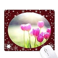 美しい花の赤・緑・サンシャイン オフィス用雪ゴムマウスパッド