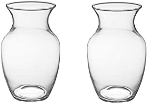 "8"" Glass Rose Vase (Case of 2) #999 By Oasis Floral Products"