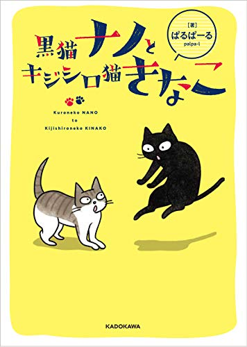 黒猫ナノとキジシロ猫きなこ - ぱるぱーる