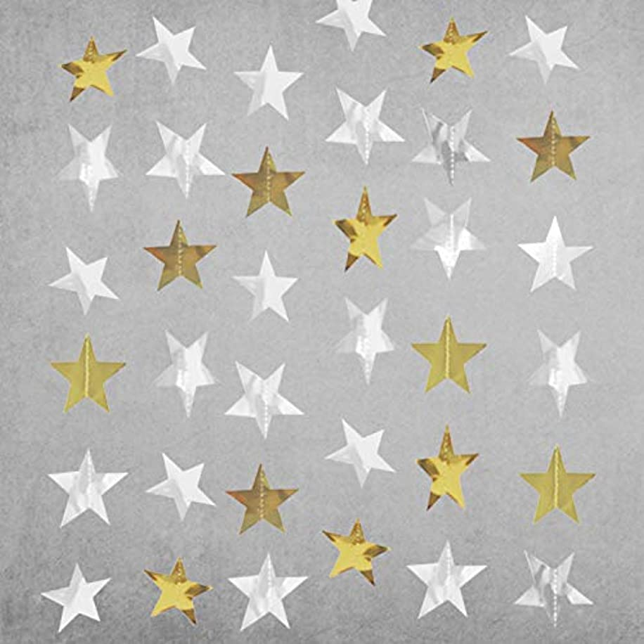 Gender Reveal Party Decorations 2pcs Twinkle, Twinkle Gold sliver Paper Star Garland Star String Baby Shower Decorations, Birthday Decorations, Boy Girl Gender Reveal Party Supplies