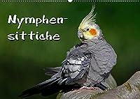 Nymphensittiche (Wandkalender 2022 DIN A2 quer): Freche Voegel (Monatskalender, 14 Seiten )
