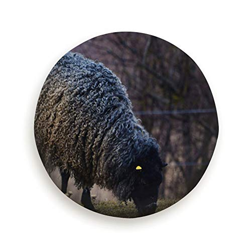 """X-Large Gotland Sheep On Meadow Typical Swedish Animals Wildlife Animal Universal Spare Wheel Tire Cover Fit for Truck Camper Van,Jeep,Trailer, Rv, SUV Trailer Accessories 16"""""""