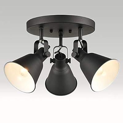 EUL Multi-Directional Ceiling Spot Light,Adjustable Track Lighting,Semi Flush Mount Matte Black-3 Light