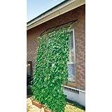 【転倒防止パーツ付 】DAIM 緑のカーテン アーチ型 2本セット 伸縮立掛けタイプ 180cm幅×高さ190~340cm(直立時)