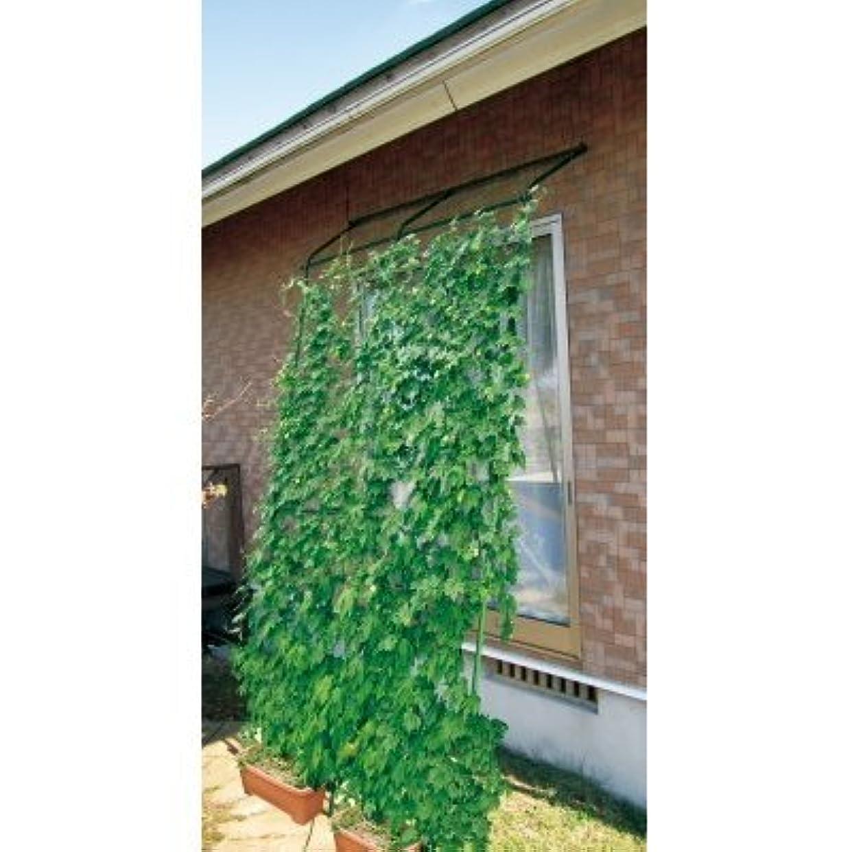 収穫個性肩をすくめる【転倒防止パーツ付 】DAIM 緑のカーテン アーチ型 2本セット 伸縮立掛けタイプ 180cm幅×高さ190~340cm(直立時)