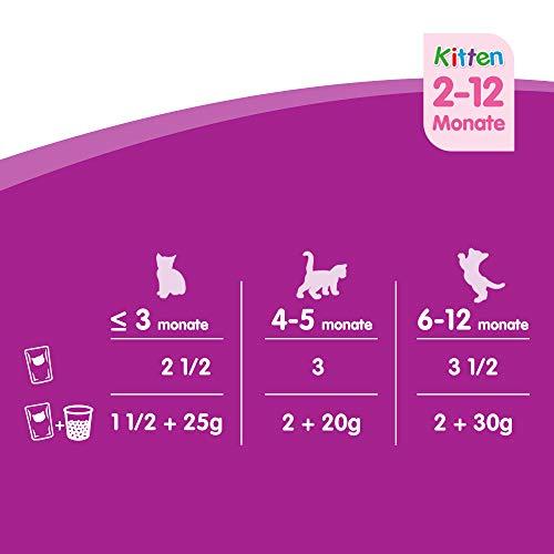 Whiskas Katzen-/Nassfutter Multipack Junior für junge Katzen Klassische Auswahl in Sauce, 48 Portionsbeutel (4 x 12 x 100 g) - 4