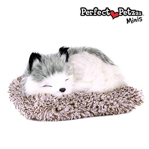Mini Baby Alaskan Husky, Realistic, Lifelike Stuffed Interactive Toy, Companion Pet Puppy with 100% Synthetic Fur – Perfect Petzzz