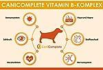 CaniComplete Vitamin B Complet pour Chien Chat : B1, B2, B3, B5, B6, B9, B12, K3, Calcium, Acide Folic. Prend en Charge Les Fonctions nerveuses importantes. #2