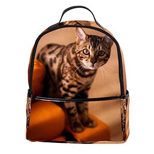 KAMEARI Mochila para la escuela gato en el sofá naranja mochila casual para viaje con bolsillos laterales para botella