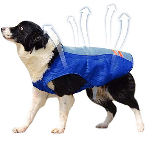 XDYFF Kühlweste für Hunde Vest Selbstkühlend Atmungsaktiv für große Hunde Walking Outdoor Jagd Training Camping,Blue,L