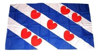 Fahne / Flagge Niederlande - Friesland NEU 30 x 45 cm