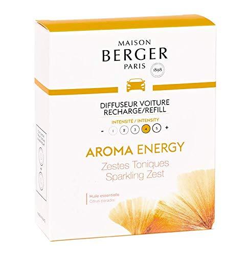 Lampe Berger Rec.X2 DIFF VOIT.Energy