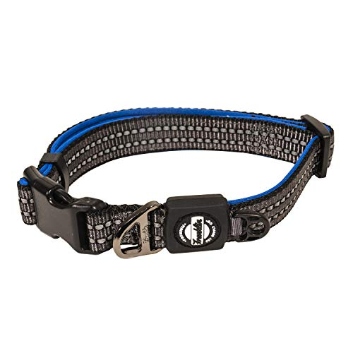 Franklin Pet Supply Nylon Dog Collar – Reflective Co™ – Comfort Fit – Neoprene – Adjustable – Small – Blue