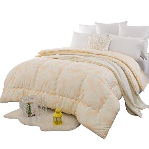 MMM Couette hiver Combo double épaississement individuel garder la literie chaude (taille : 150 * 200cm(3.5kg))