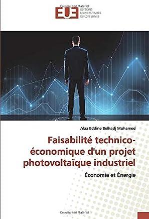 Faisabilité technico-économique dun projet photovoltaïque industriel: Économie et Énergie