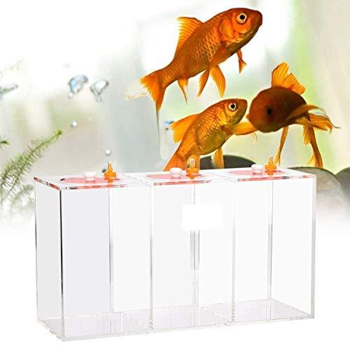 Aquarium Acryl Flüssigkeitsvorratsbehälter Transparent Acrylic Dosierpumpe Shop Reservoir Barrel Titration Tank-Aquarium (4.5L)