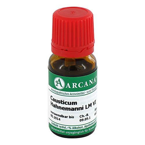 CAUSTICUM ARCA LM 6, 10 ml