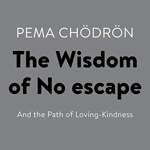 Couverture de The Wisdom of No Escape