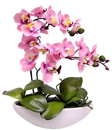 Flair Flower Kunstblume Schmetterling Orchidee in Schale Künstliche Blume Kunstorchidee Phalaenopsis mit Übertopf Kunstpflanze Hochzeit Deko, rosa, 27 cm