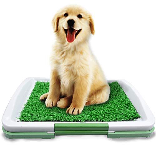 Yhjmdp Kunstrasen für Hunde-PIPI-Kissen,Trainingsunterlage, tragbar Innen und Draussen Hundetöpfchen, Bad Kunstrasen, Ungiftig, zum Welpen, Katzen
