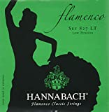 HANNABACH フラメンコ弦 E827LT Green Set