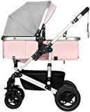 NLRHH Cochecito de bebé recién Nacido Cochecito de bebé bebé, Plegable liviano Amortiguador Amortiguador niños Empuje carros bebé Carro Infantil aleación de Aluminio Marco Peng