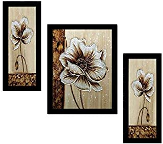 PAF written in a Frame 3 Set of Flower Framed Wall Hanging Decor Modern Art Painting 12 x 18 inch