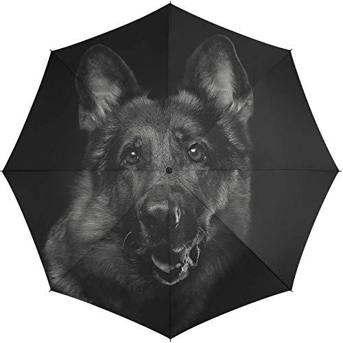 Paraplu op-automatisch zwart hond