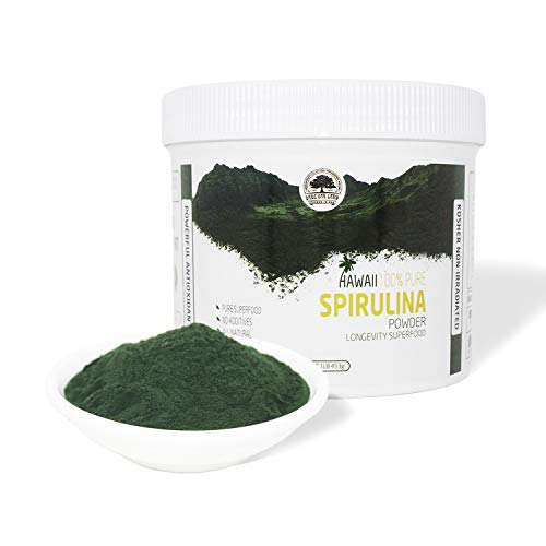 DOL-Spirulina Powder 16 Ounce ,Substitute protein powder,Fitness food,Highest Quality Spirulina on Earth - 100% Vegetarian,1LB