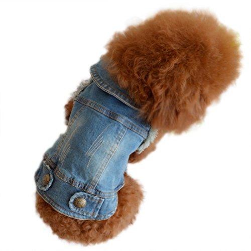 Veste rétro en jean pour petit chien, vêtements printemps, automne, manteau pour chien, manteau pour animal domestique pour chiots, chihuahua, poodle, bichon frise (M)