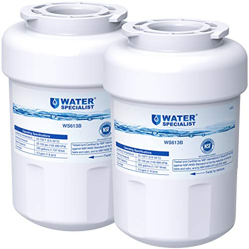 Waterspecialist MWF Refrigerator Water Filter, Replacement for GE Smart Water MWF, MWFINT, MWFP, MWFA, GWF, HDX FMG-1, WFC1201, RWF1060, Kenmore 9991, Pack of 2 (Packing May Vary)