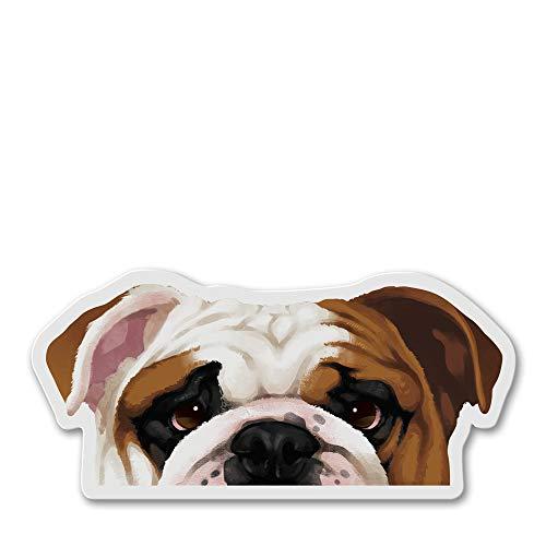 WIRESTER Fridge Magnet Decoration for Kitchen Refrigerator, English Bulldog