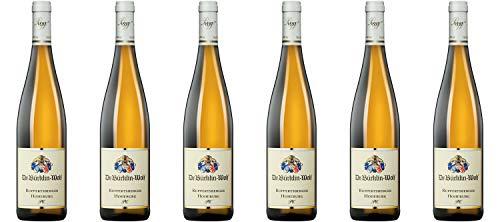 Weingut Dr. Bürklin-Wolf Ruppertsberger Hoheburg P.C. Riesling trocken Pfalz 2018 Wein (6 x 0.75 l)