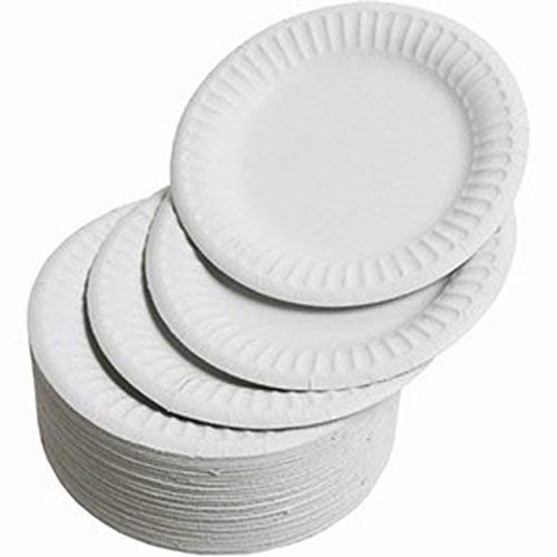Ahippob - Platos de papel para fiestas, 100 unidades, 100 % natural, biodegradable, bagazo, papel ecológico alternativo, platos desechables redondos, 4.5 pulgadas x 13.2 cm