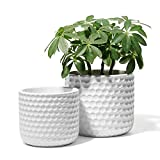 POTEY 6 and 5 Inch Ceramic Planter with Drainage Hole for Indoor and Outdoor Plant, 813, White