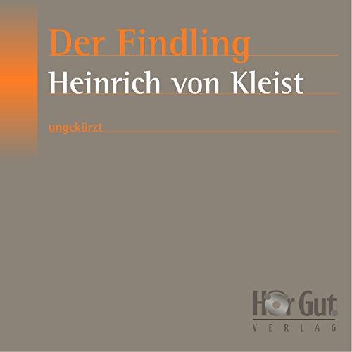 Der Findling audiobook cover art