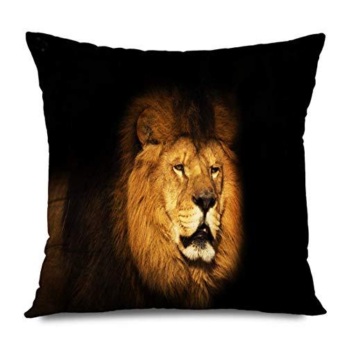 LXJ-CQ Throw Pillow Cover Square 18x18 Kenya View Berber Lion Carnivore Black Animals Who Five Wildlife Nature Majestic Mammal Most World Zippered Pillowcase