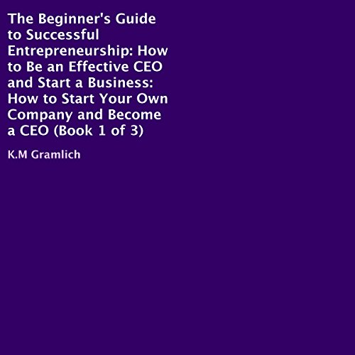 The Beginner's Guide to Successful Entrepreneurship audiobook cover art