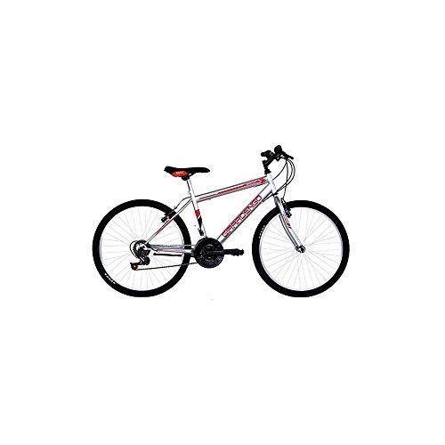 Masciaghi Bicicletta Mountain Bike Ruota 26 per Ragazzo Argento